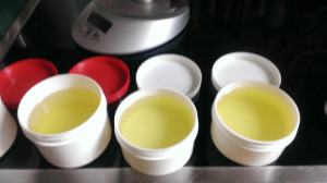 Insektenschutz - Öl: Neem, Kokos, Lavendel