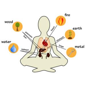 wu xing - 5 Wandlungsphasen der chinesischen Medizin - Stresstechniken