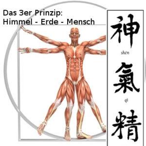 Himmel - Erde - Mensch : das 3er Prinzip der Gesundheit - Stressbewältigung