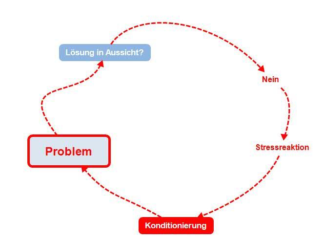 Stress - Teufelskreis