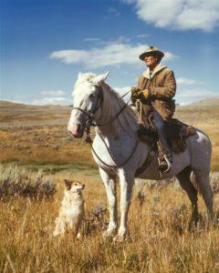 Mücken- und Zeckenabwehr - Insektenschutz bei Pferd, Hund und Mensch